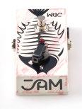 JAM Pedals Ripple